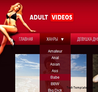 Adult Videos (Test-Templates)